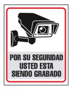 proteccion de datos videovigilancia